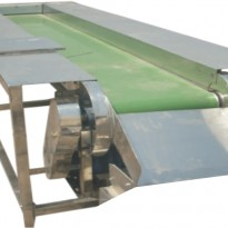 SORTING – INSPECTION CONVEYOR – PACKAGING SOLUTIONS INDIA